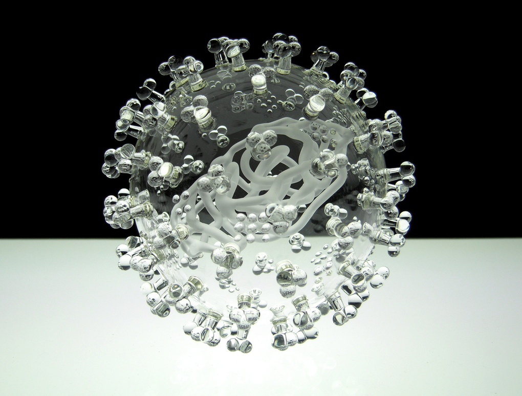 Swine Flu glass model